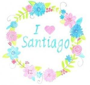 Donations I Love Santiago LOGO